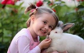 conejo acariciado